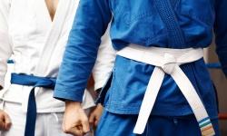Методика викладання дзюдо на уроках фізичної культури в ЗЗСО